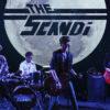 The Scandi